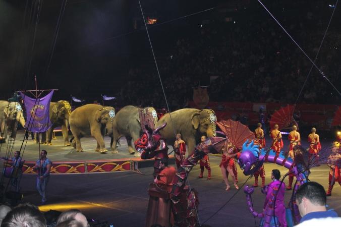 Circus 2013 029
