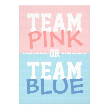 team_pink_or_team_blue_baby_gender_reveal_party_invitation-r7fded6c90d2e4d828154601bbe8e63c6_8dnm8_8byvr_512