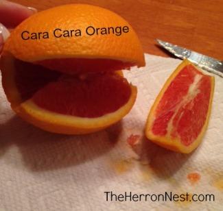 caracara orange_TheHerronNest.com